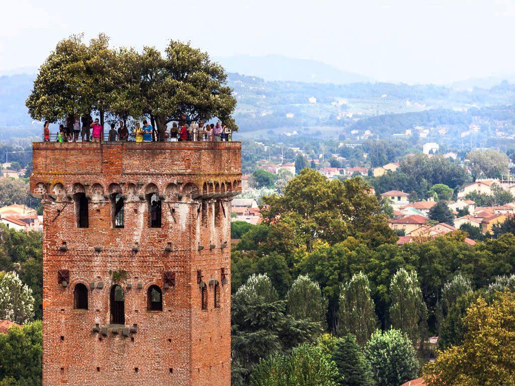 Torre_Guinigi_Lucca2-آراد-چوب-ایرانیان