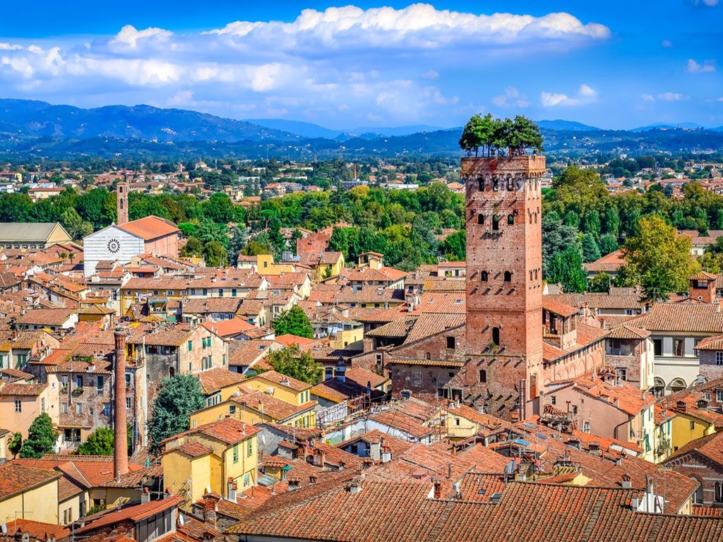 Torre_Guinigi_Lucca2-آراد-چوب-ایرانیان1