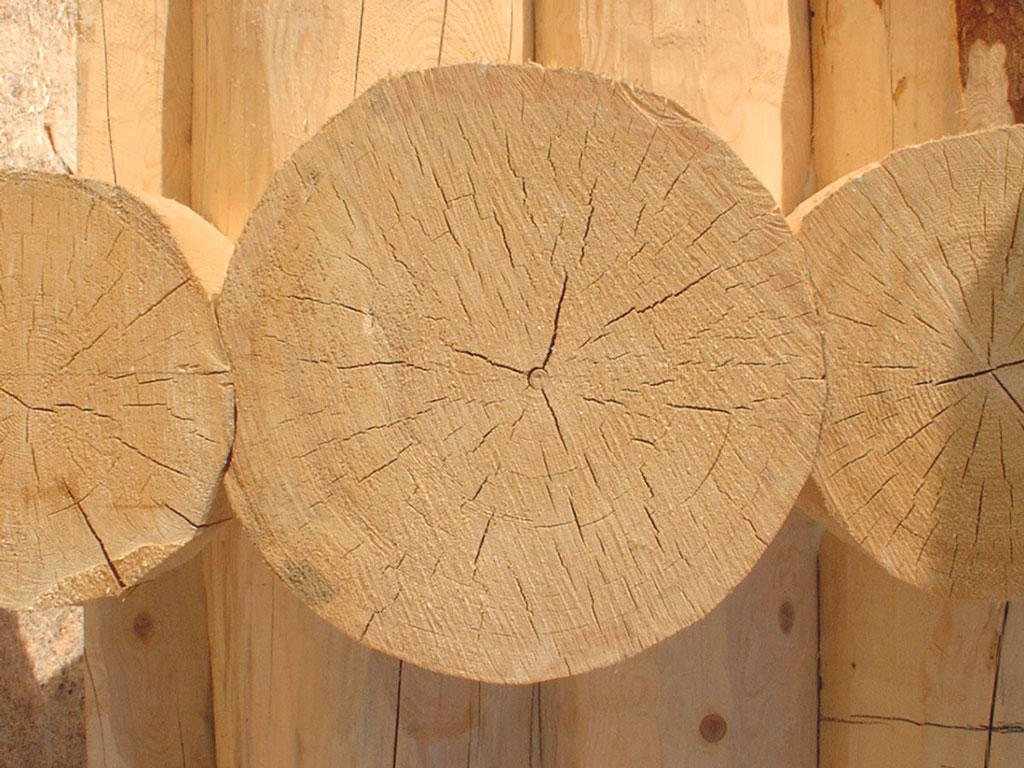 چوب-اسپروس-یولکا-آراد-چوب-ایرانیان1